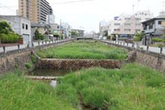 中井医院のお庭と逆瀬川